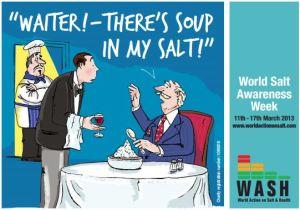 Salt snipit